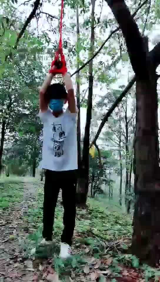Outdoor, hanging, whipping, dog abuse