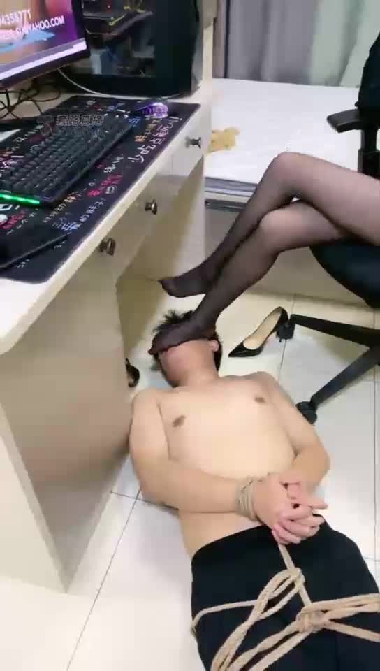 Humiliating a humble dog under the desk, 1