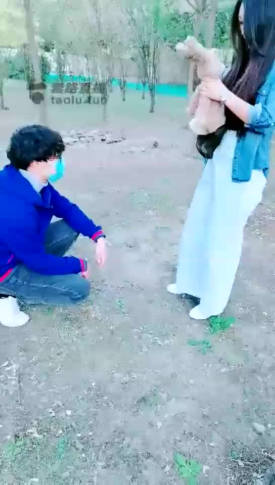 HD, outdoor, broad day kicking a puppy