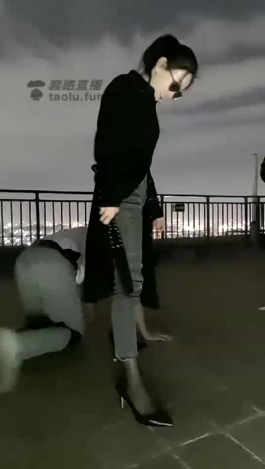 Rooftop training little milk dog