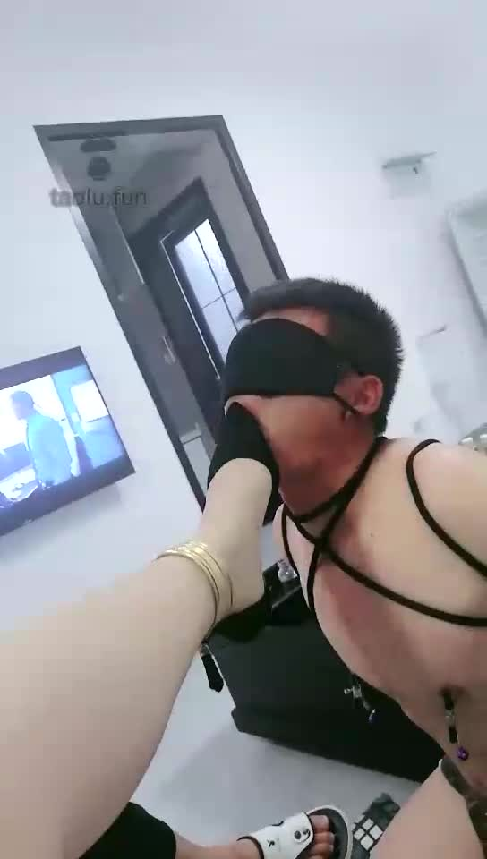 HD, binding, dog training, licking feet, washing feet